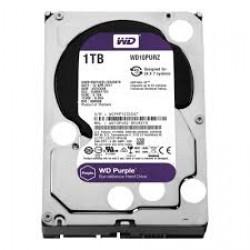 HDD WESTERN DIGITAL PURPLE 1TB 10PURX